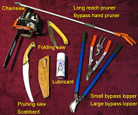 Some Pruning tools that can be used to maintain a garden.