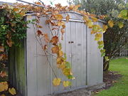 A metal garden shed made with sheets of galvanized steel over a steel frame